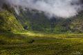 Maui Green print