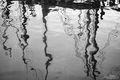Ship Reflections print