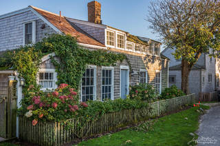 house, cottage, ivy, Siasconset
