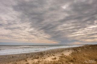 ocean, water, dunes, shore, seascape