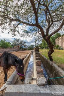 Mexico, North America, San Miguel de Allende