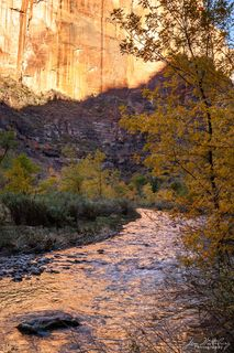 canyon, reflect, stream, Zion National Park