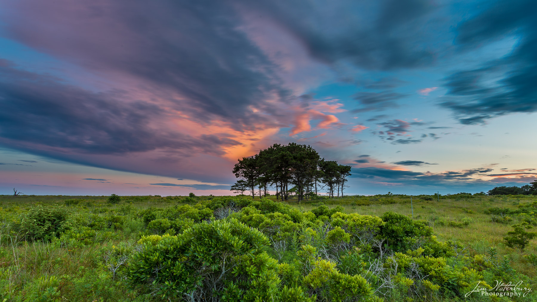 A group of trees is framed by dramatic and colorful skies at twilight, as seen from Barrett Farm Road, near Madaket, Nantucket...