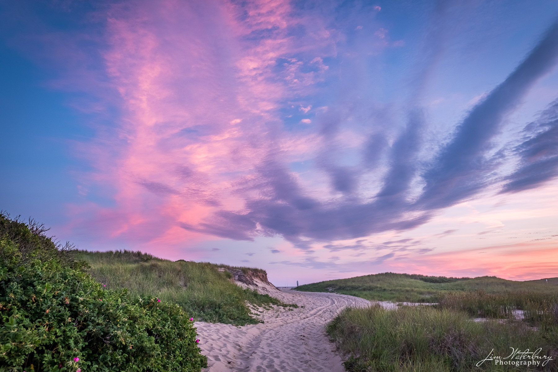 Following a colorful sunset, the sky glows with pink and blue, as a sandy beach access road winds through the surrounding shrubs...
