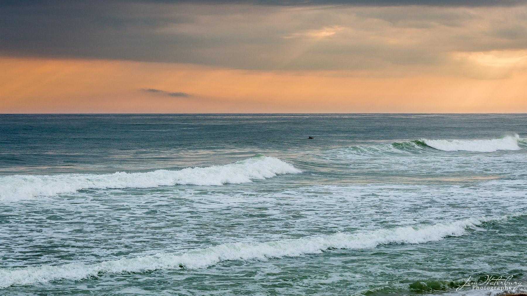 surfer, waves, sunset, beach, Nantucket, ocean, photo