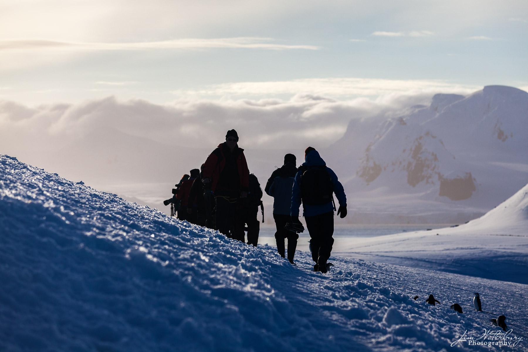 Antarctica, hiking, mountains, Half Moon, photo