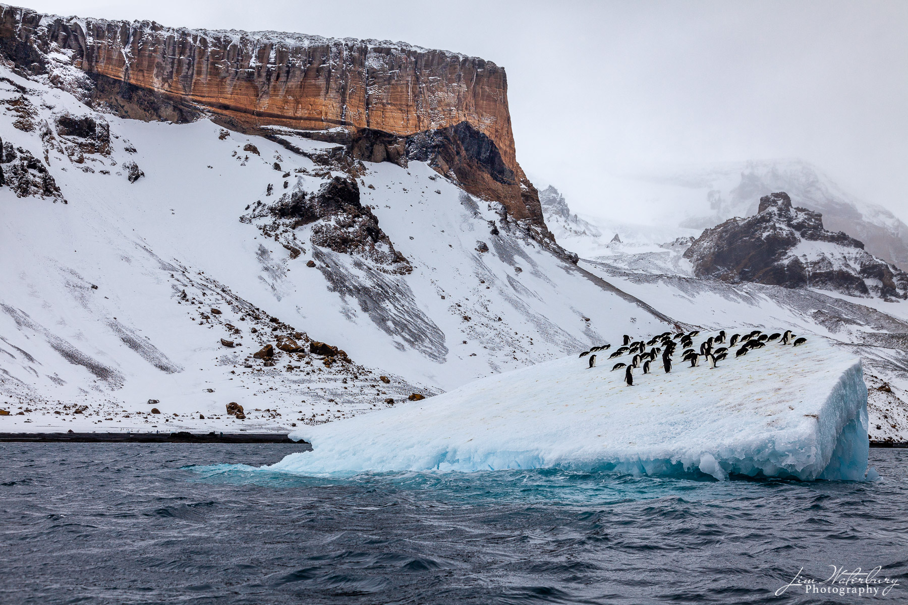 Penguins gather on an iceberg floating off of Brown Bluff, in the Antarctic Peninsula, on a stormy day.
