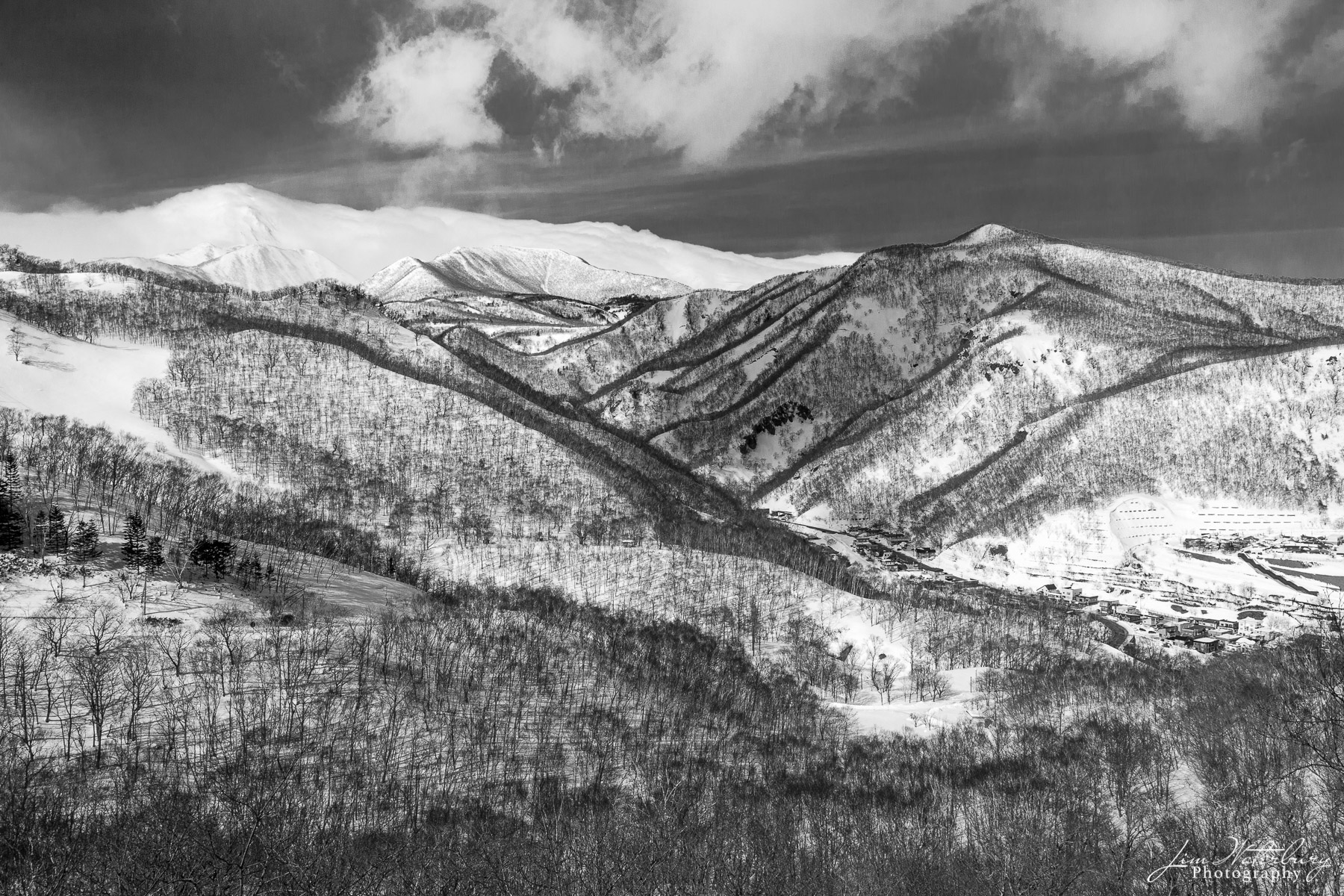 Black & white image of tree and snow-covered mountains in northern Hokkaido, Japan, with a bank of clouds above.