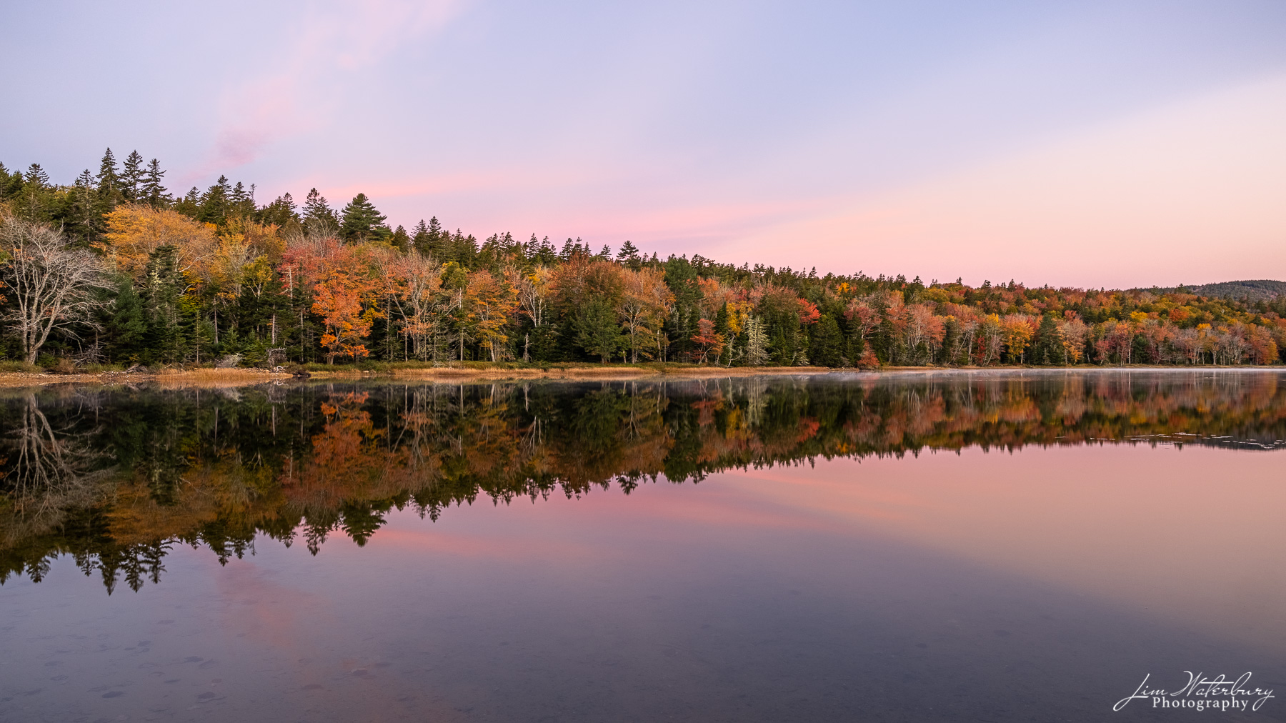A calm morning, just before sunrise, reveals delicate pastel colors in the sky and a wonderful reflection of the trees with their...