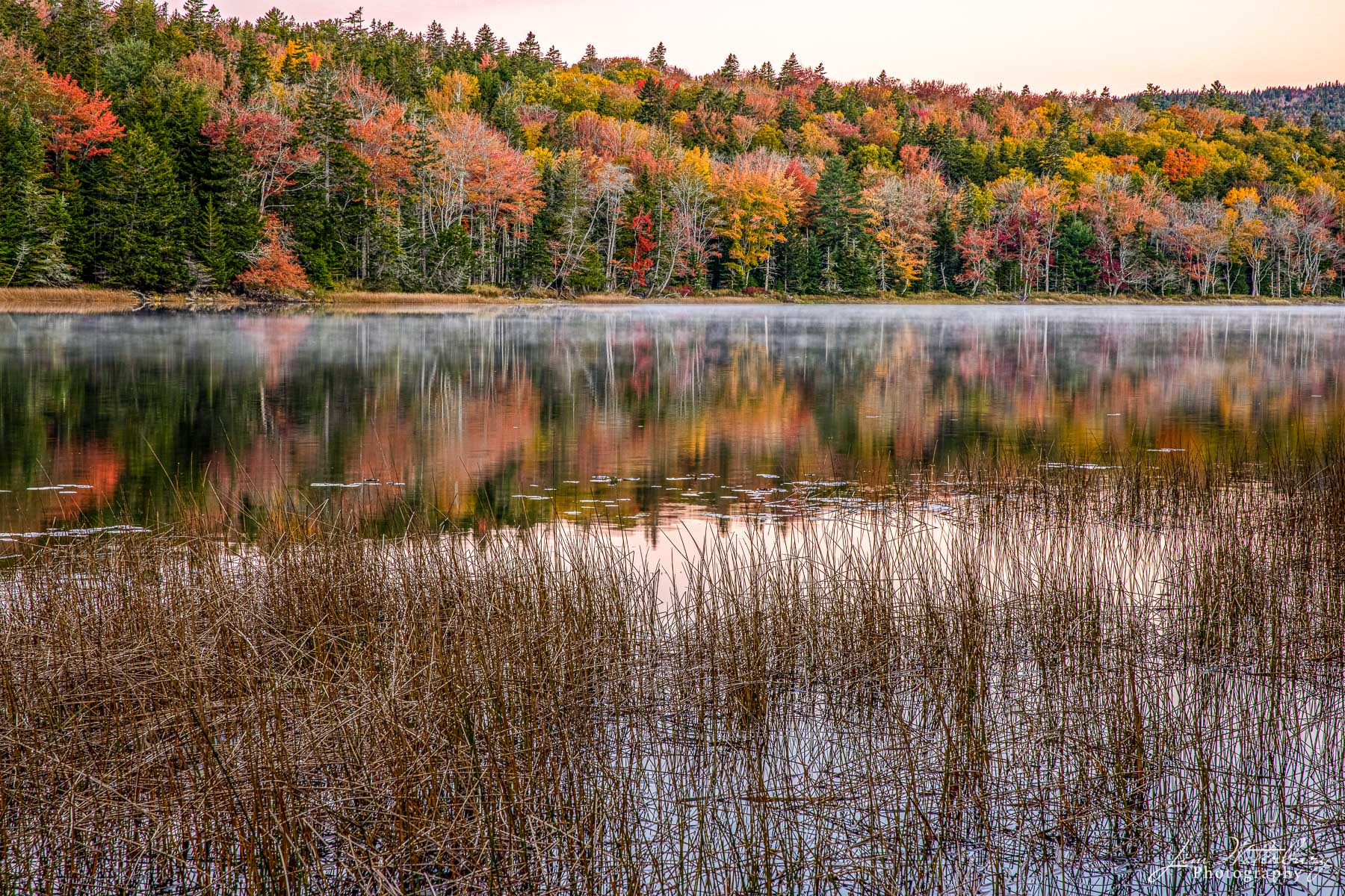 A still pre-dawn scene on Little Long Pond showcases the brilliant colors of fall, and their reflection in the dark waters of...