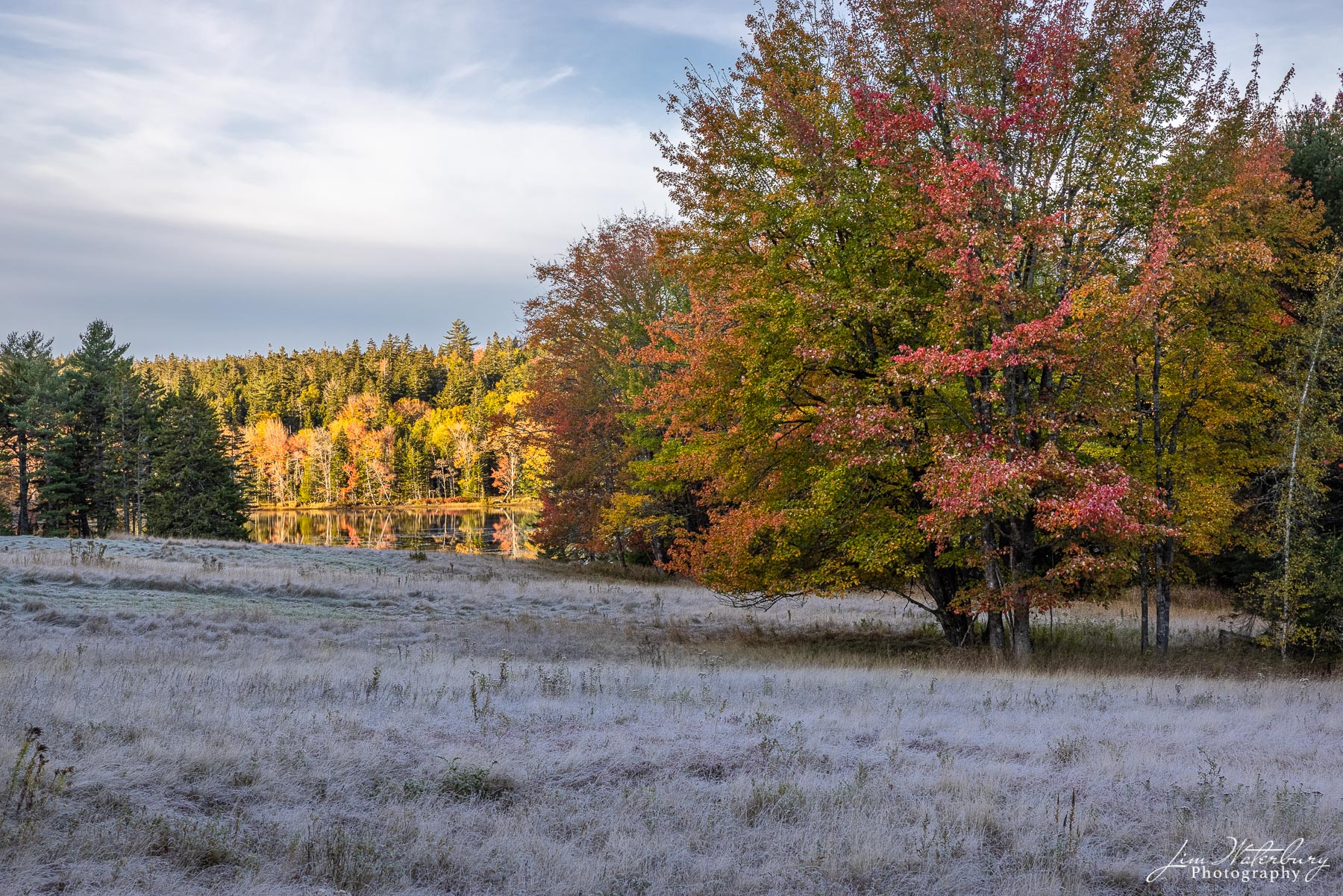A frost-covered meadow leads down to the waters of Little Long Pond, and the fall foliage behind.