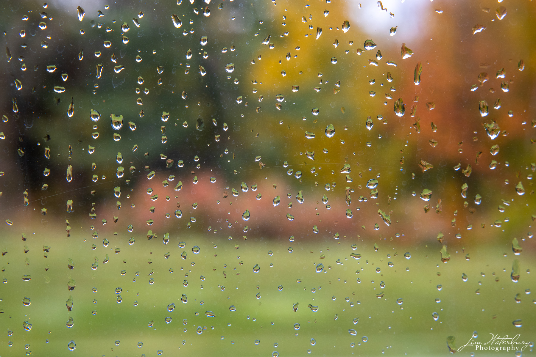 Abstract image of trees with their fall colors, photographed through a window covered with rain drops.