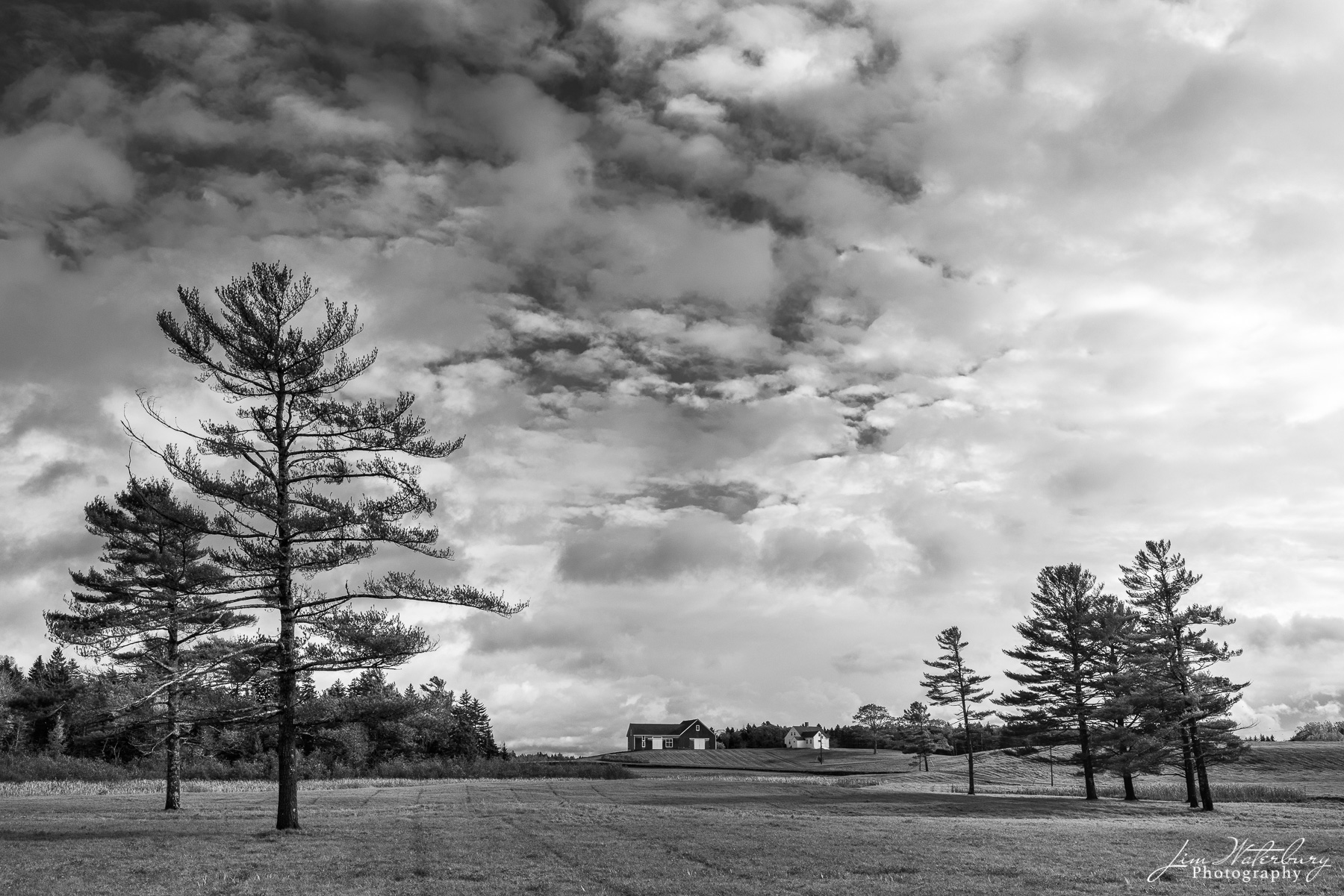 Black & white image of a classic Mine house framed by pines under a stormy sky, near Cushing, Maine