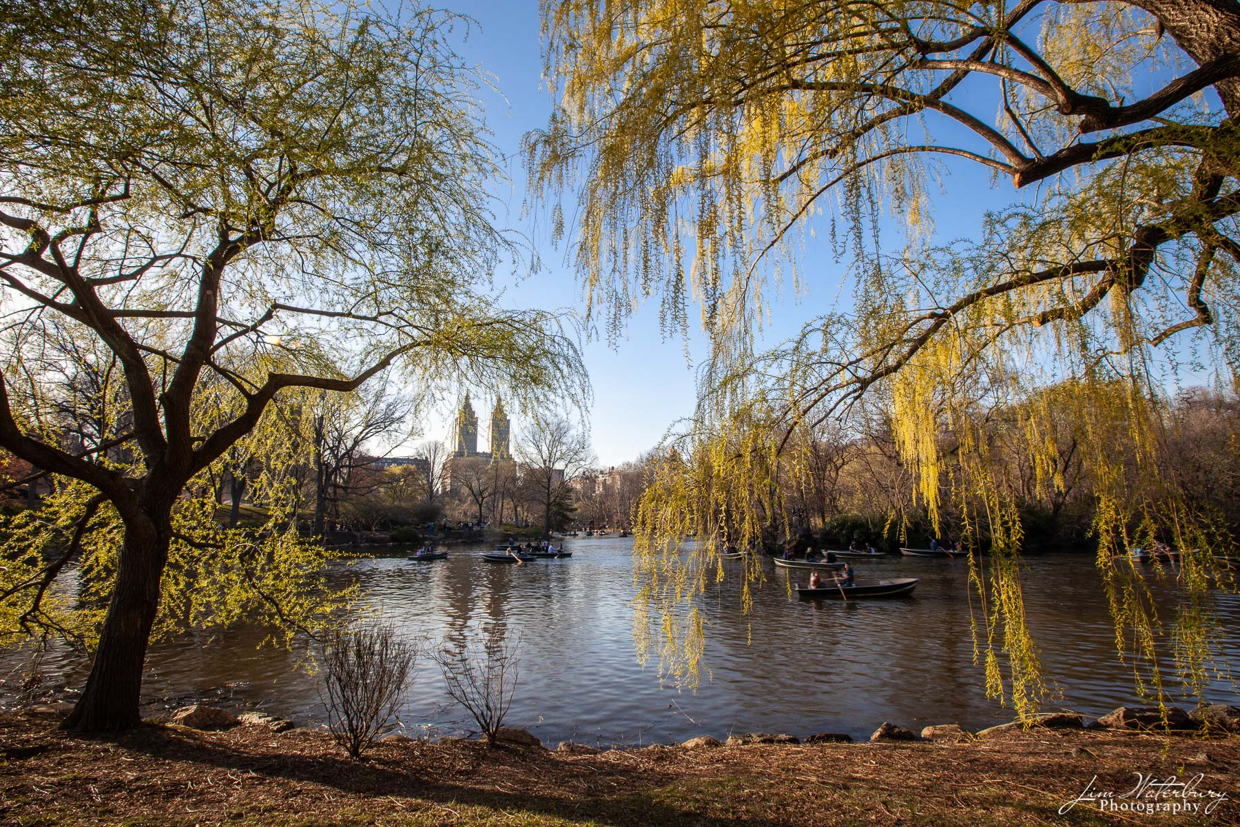 Rowboats float on the lake near the Loeb Boathouse in Central Park, New York, in spring, with the twin towers of The Eldorado...