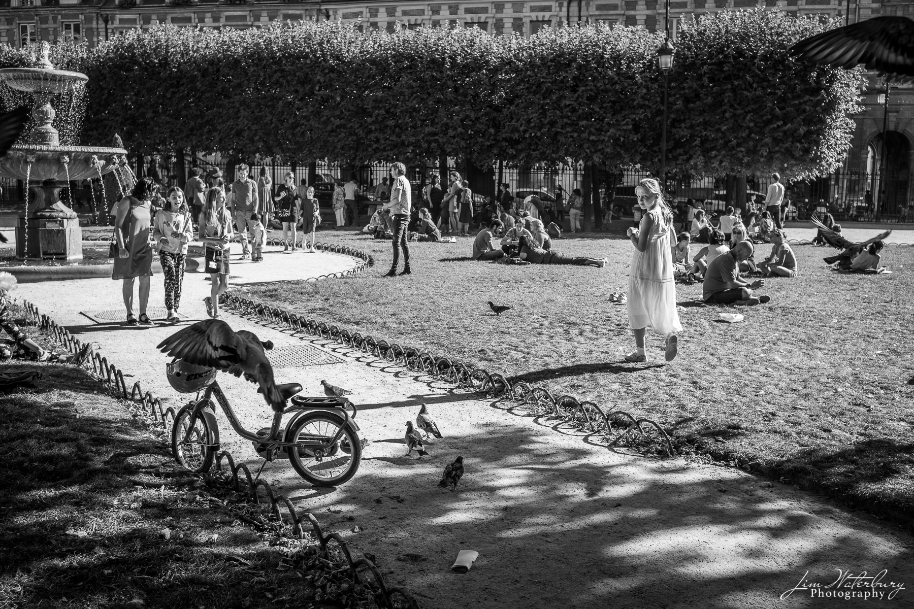 A young girl checks on her bicycle, now encircled by a group of pigeons.  Place des Vosges, Paris. Black & white.
