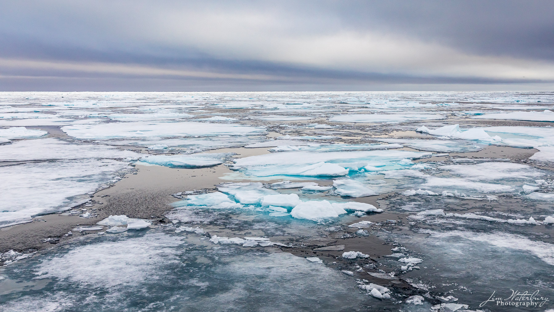 """Pack ice at 82""""20' north, in the high arctic."""