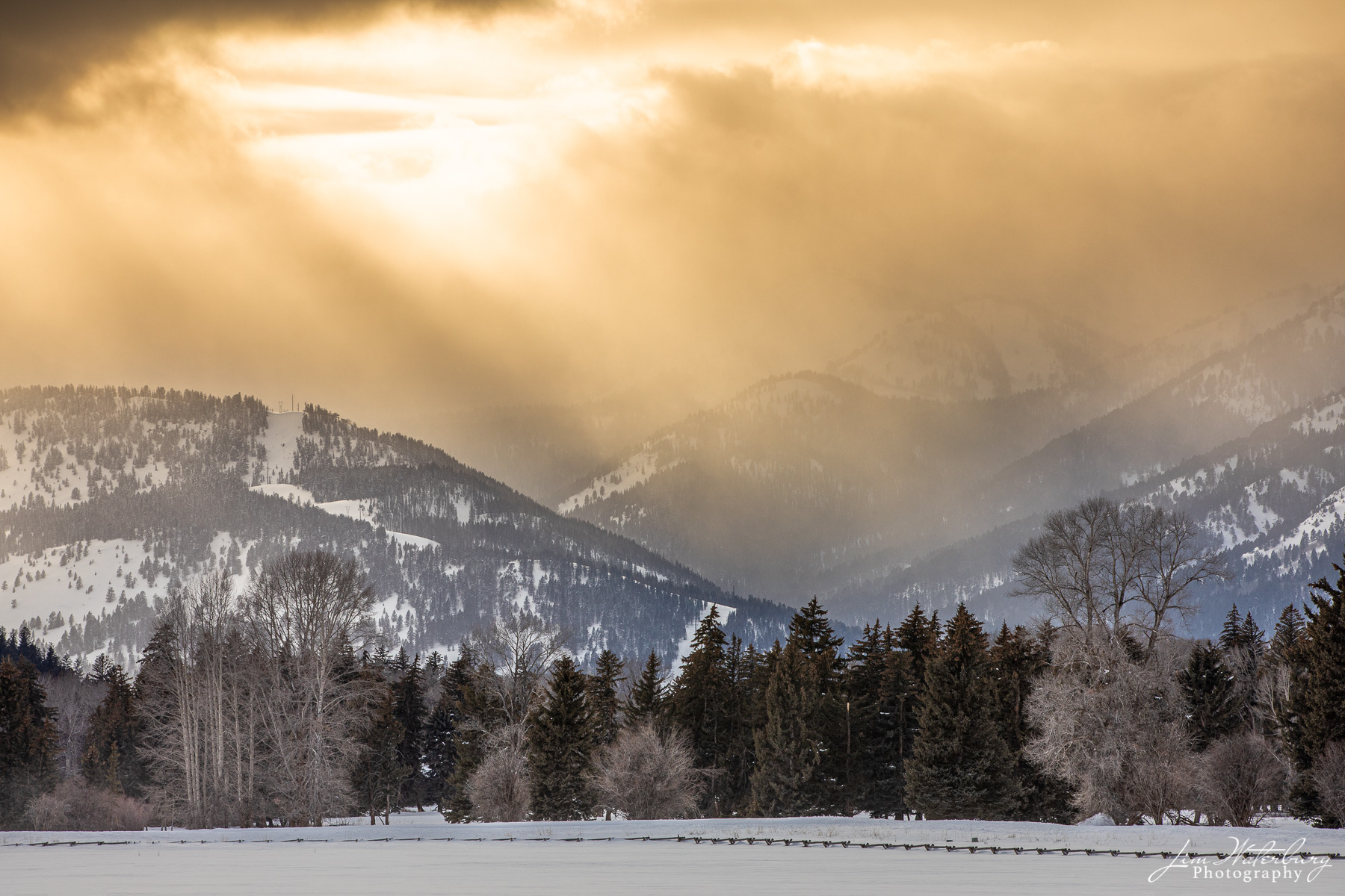 The late afternoon sun filters through building snow clouds in a valley off Spring Gulch Road, Jackson, WY.