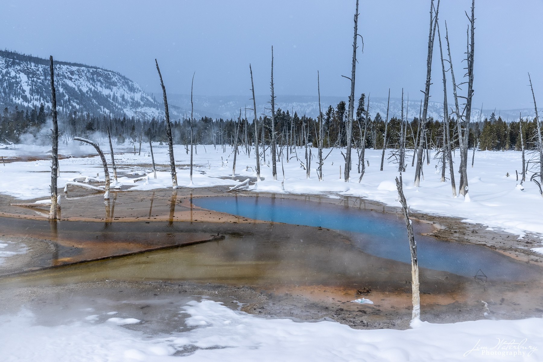 NATIONAL PARKS, Yellowstone