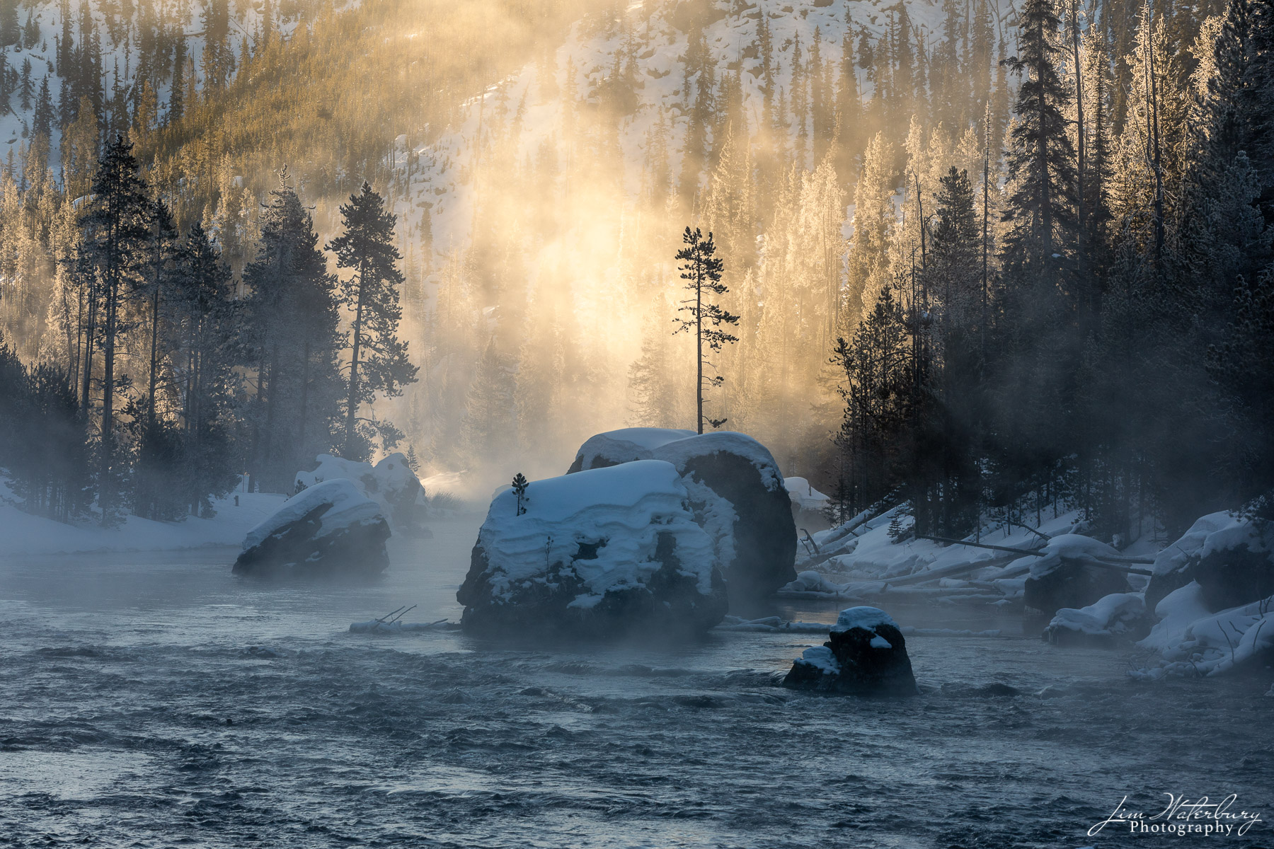A single tree grows from a rock in the middle of a river in Yellowstone, backlit by mist illuminated by the rising sun.