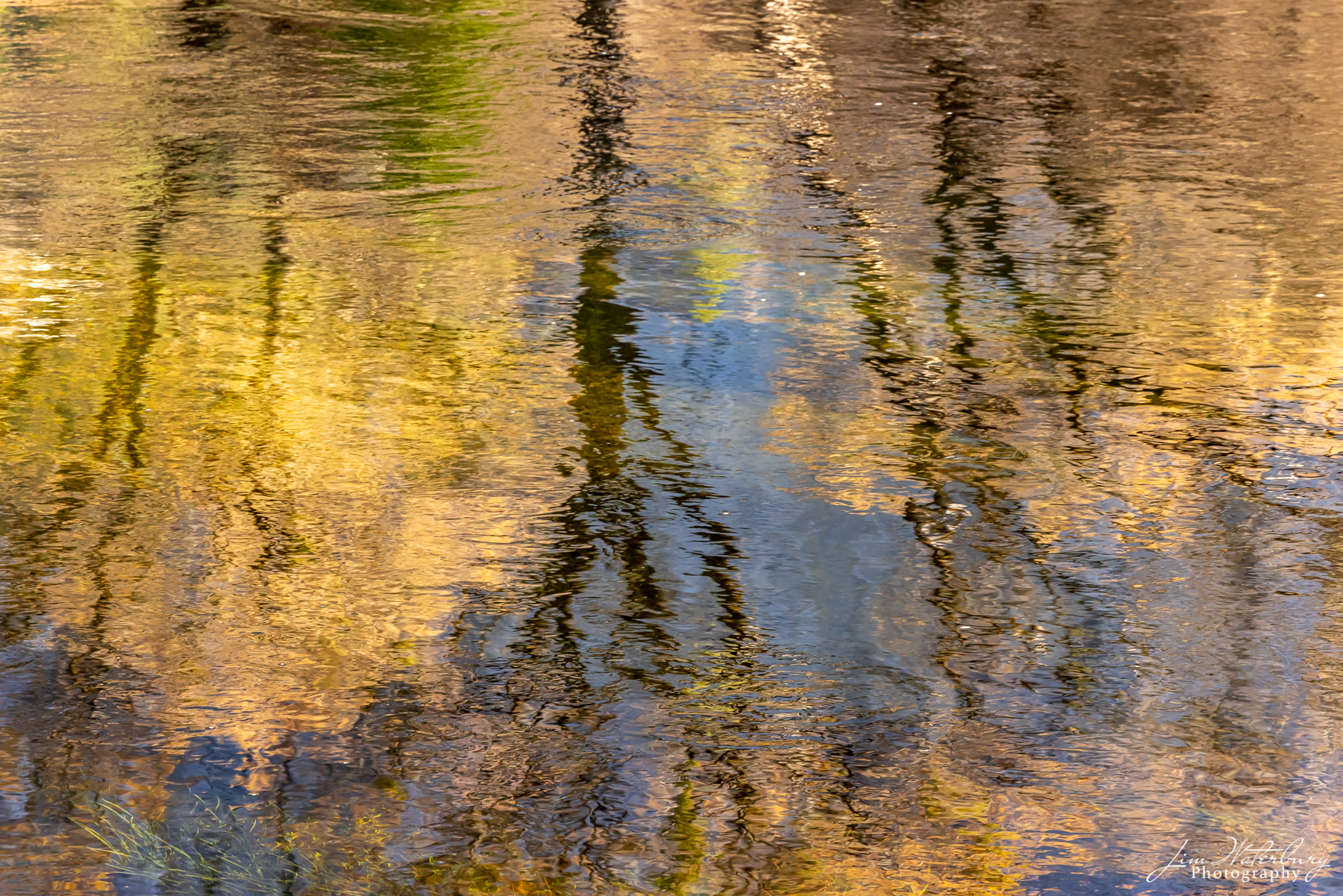 Reflection of cliffs and trees in the Merced River