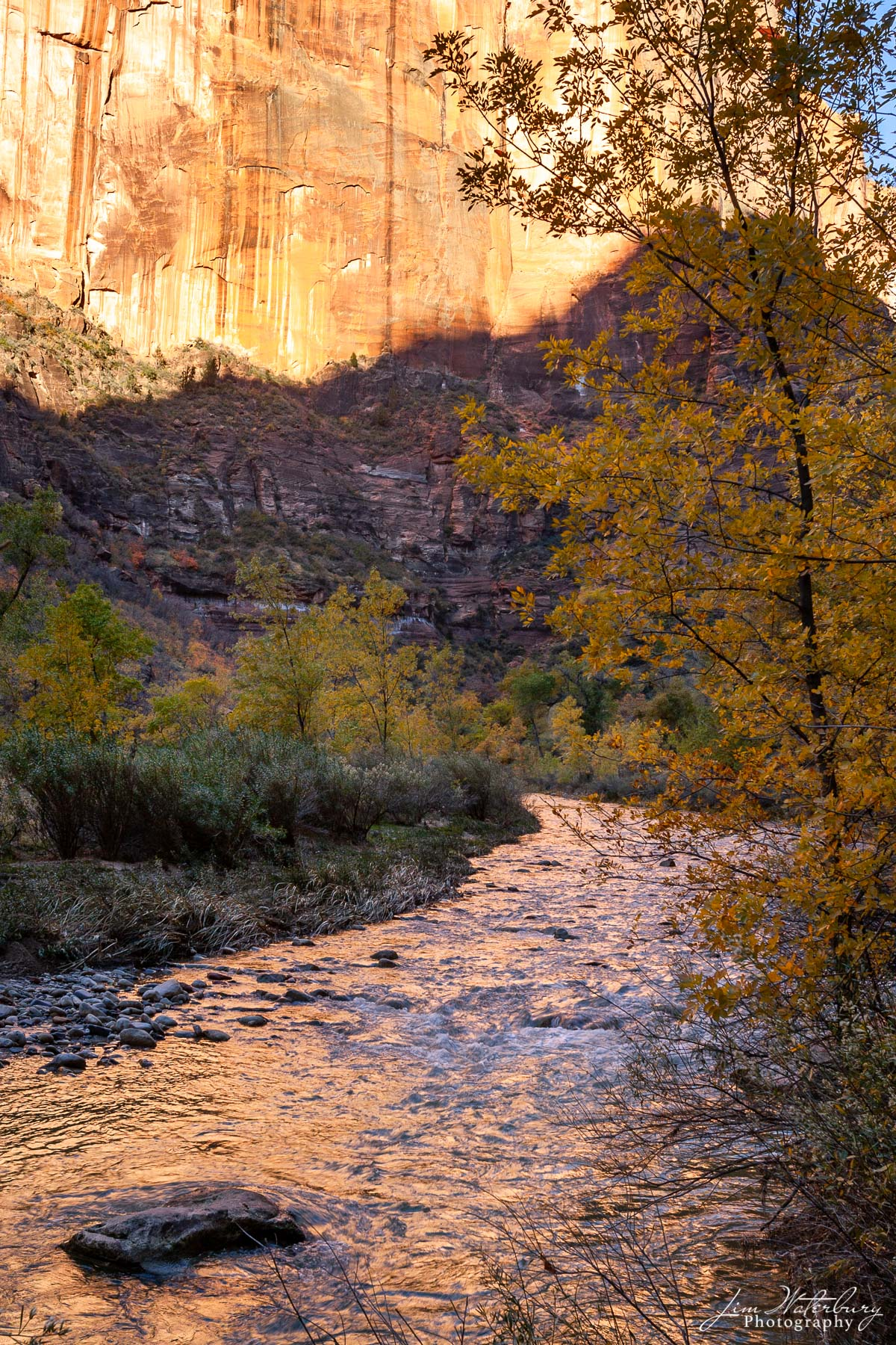 canyon, reflect, stream, Zion National Park, photo